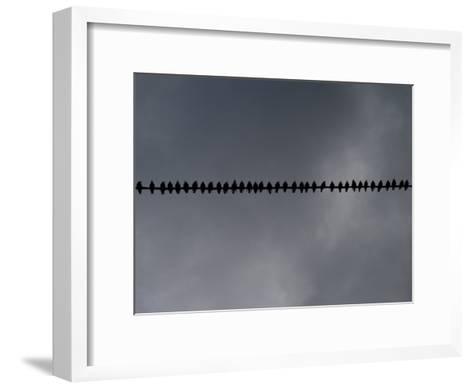 Birds on a Telephone Wire: Bird School-xPacifica-Framed Art Print