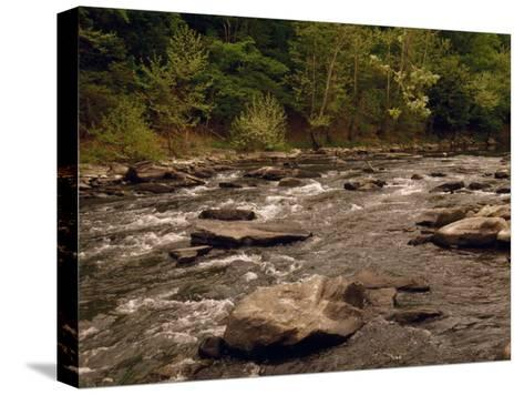 Scenic Bluestone River Rushing Through Pipestem State Park-Raymond Gehman-Stretched Canvas Print