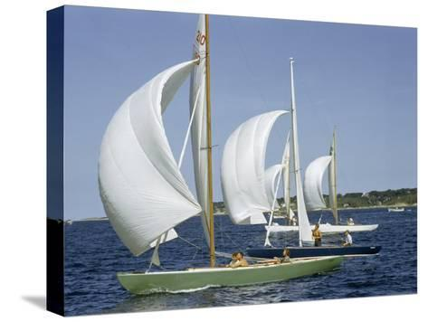 Sailboats Cross a Race Course Starting Line with Wind-Filled Sails-Robert Sisson-Stretched Canvas Print