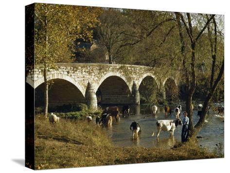 Boy Fishes in a River Near Wading Cows and Old Stone Bridge-Joseph Baylor Roberts-Stretched Canvas Print