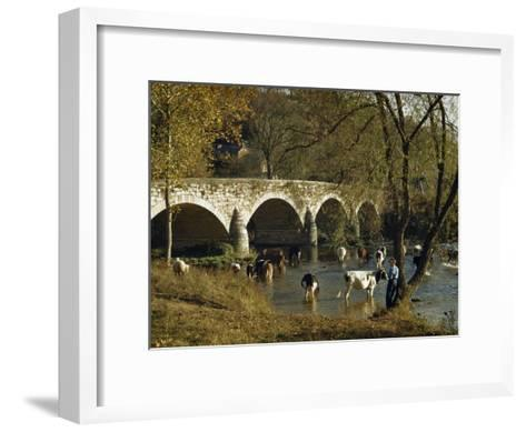 Boy Fishes in a River Near Wading Cows and Old Stone Bridge-Joseph Baylor Roberts-Framed Art Print