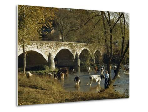 Boy Fishes in a River Near Wading Cows and Old Stone Bridge-Joseph Baylor Roberts-Metal Print