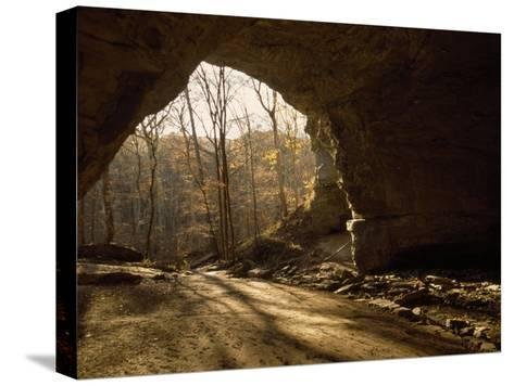 View Looking Out from the Mouth of a Cave Looking Out into a Forest-Raymond Gehman-Stretched Canvas Print