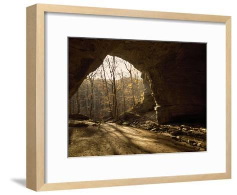 View Looking Out from the Mouth of a Cave Looking Out into a Forest-Raymond Gehman-Framed Art Print
