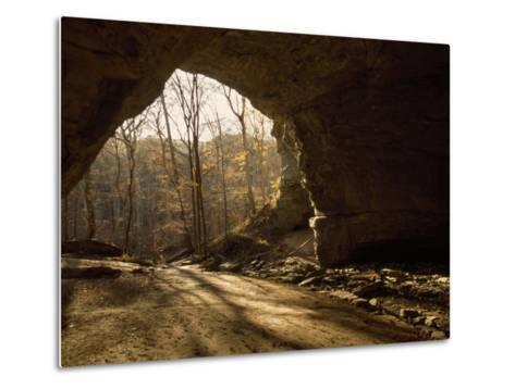 View Looking Out from the Mouth of a Cave Looking Out into a Forest-Raymond Gehman-Metal Print