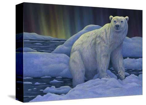 Polar Bear on the Ice--Stretched Canvas Print