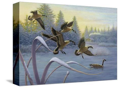 Geese on Winter Lake--Stretched Canvas Print