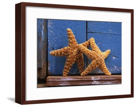Two Starfish--Framed Art Print