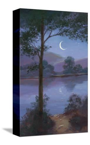Moonlit Lake--Stretched Canvas Print