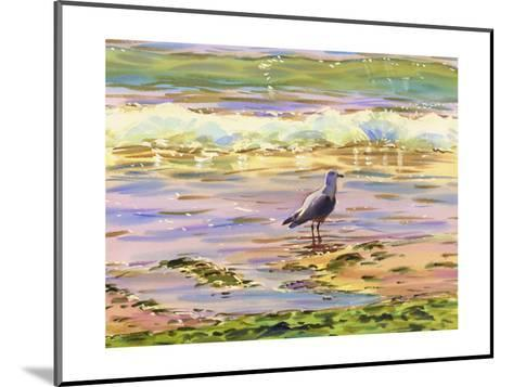 Seagull at Water's Edge--Mounted Art Print
