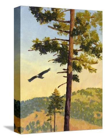 Eagle Flying by a Tree--Stretched Canvas Print
