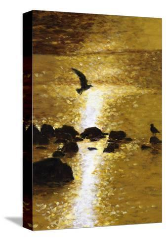 Seagull Flying over Water--Stretched Canvas Print