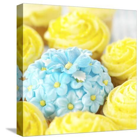 Decorated Floral Cupcake--Stretched Canvas Print
