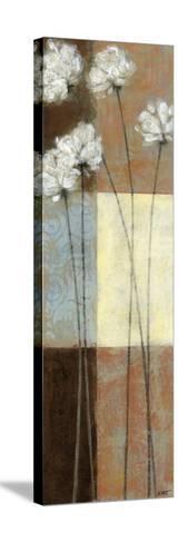 Raku Blossoms I-Norman Wyatt Jr^-Stretched Canvas Print