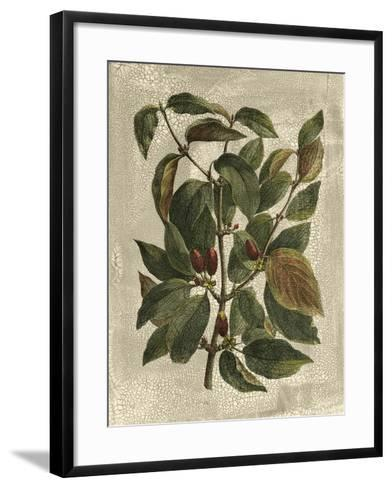 Deshayes Tree II-Gerard Paul Deshayes-Framed Art Print