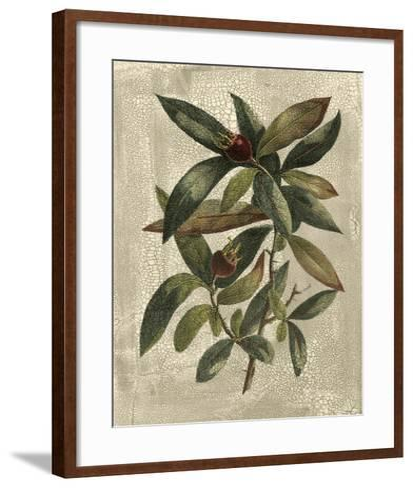 Deshayes Tree III-Gerard Paul Deshayes-Framed Art Print