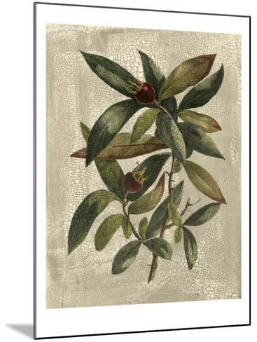 Deshayes Tree III-Gerard Paul Deshayes-Mounted Art Print