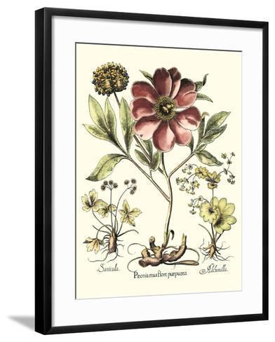 Framboise Floral I-Besler Basilius-Framed Art Print