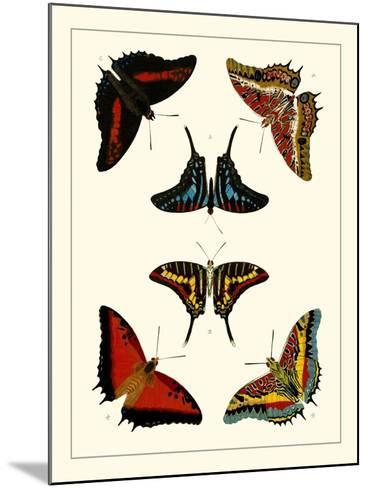 Cramer Butterflies II-Pieter Cramer-Mounted Art Print