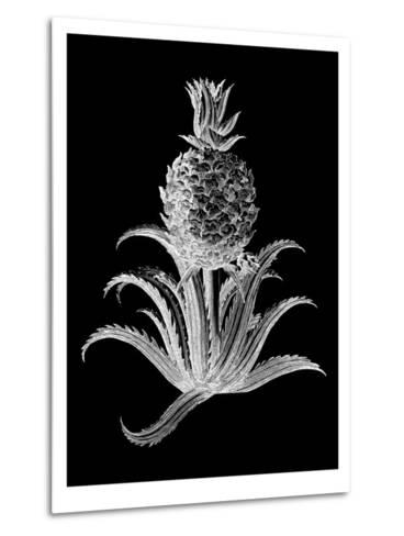 Pineapple Noir II-Vision Studio-Metal Print
