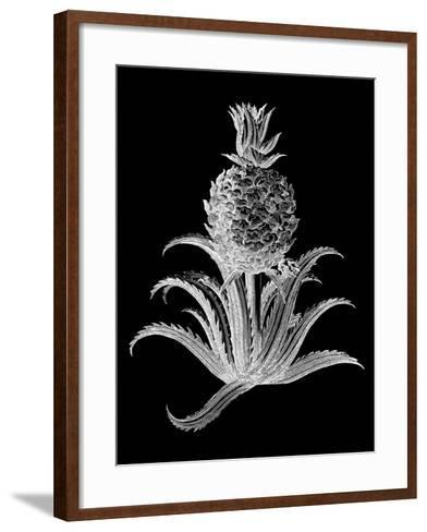 Pineapple Noir II-Vision Studio-Framed Art Print