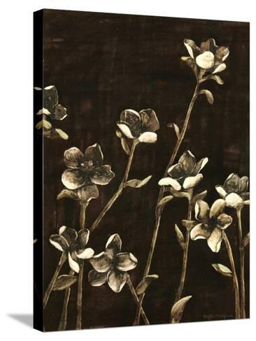 Blossom Nocturne II-Megan Meagher-Stretched Canvas Print