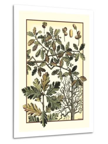 Arts and Crafts Oak-M^P^ Verneuil-Metal Print