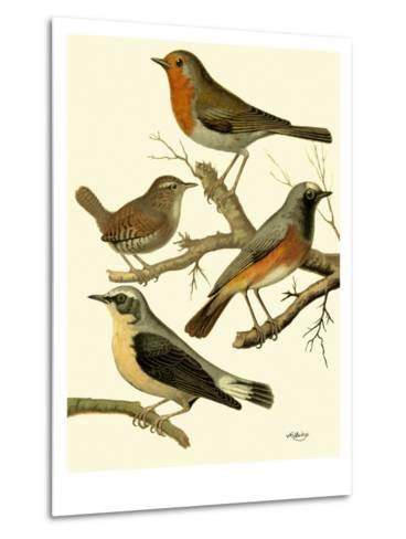 Domestic Bird Family III-W^ Rutledge-Metal Print