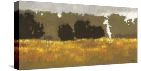 Amber Waves I-Norman Wyatt Jr^-Stretched Canvas Print