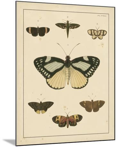Heirloom Butterflies II- Cramer-Mounted Art Print