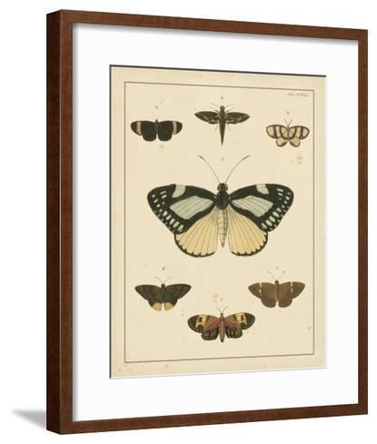 Heirloom Butterflies II- Cramer-Framed Art Print