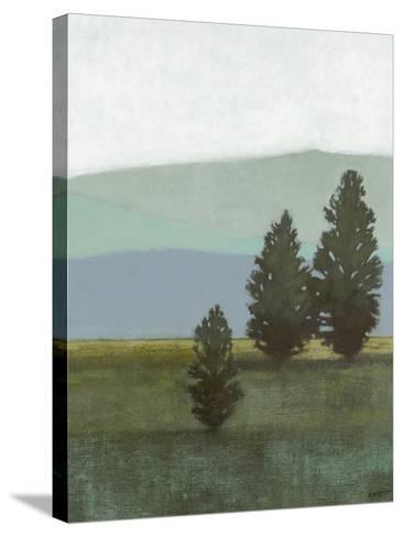 Evergreen II-Norman Wyatt Jr^-Stretched Canvas Print