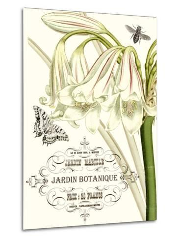 Jardin Botanique I-Vision Studio-Metal Print