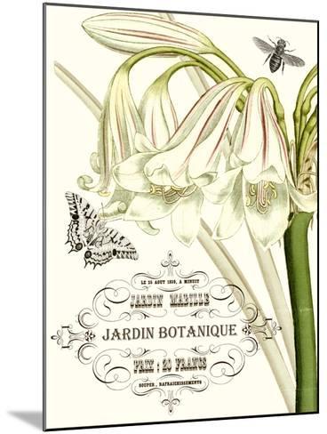 Jardin Botanique I-Vision Studio-Mounted Art Print