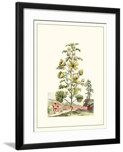 Grandiose View II-Abraham Munting-Framed Art Print