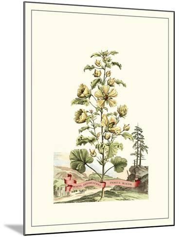Grandiose View II-Abraham Munting-Mounted Art Print