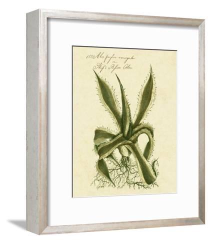 Thornton Exotics III-Robert Thornton-Framed Art Print