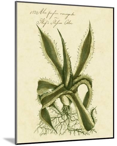 Thornton Exotics III-Robert Thornton-Mounted Art Print