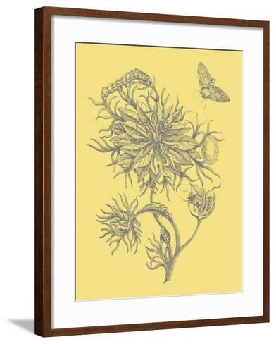Nature's Optimism II-Vision Studio-Framed Art Print