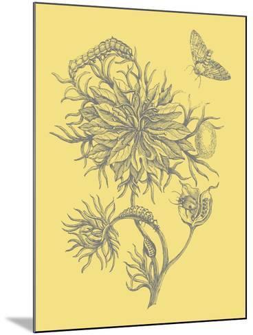 Nature's Optimism II-Vision Studio-Mounted Art Print