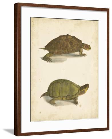 Turtle Duo IV-J^W^ Hill-Framed Art Print