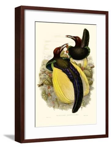 Gould Bird of Paradise IV-John Gould-Framed Art Print