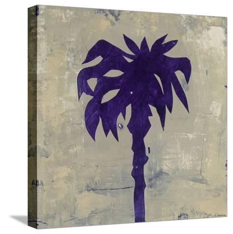 Coastal 2-David Dauncey-Stretched Canvas Print
