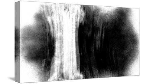 NIRVANA?The Tree under Which Buddha Meditated-Masaho Miyashima-Stretched Canvas Print