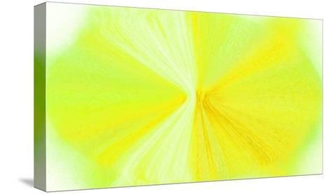 NIRVANA?Yellow Violet-Masaho Miyashima-Stretched Canvas Print