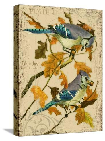 Blue Jay-Kate Ward Thacker-Stretched Canvas Print