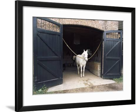 Horse Standing in a Stable, Middleton Place, Charleston, Charleston County, South Carolina, USA--Framed Art Print