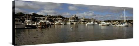 Boats at a Harbor, Oak Bluffs, Martha's Vineyard, Dukes County, Massachusetts, USA--Stretched Canvas Print