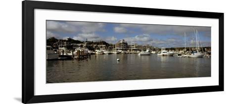 Boats at a Harbor, Oak Bluffs, Martha's Vineyard, Dukes County, Massachusetts, USA--Framed Art Print