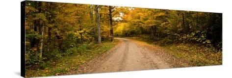 Dirt Road Passing Through a Forest, New Hampshire, USA--Stretched Canvas Print
